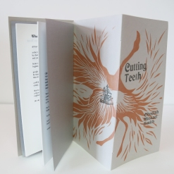 Cutting Teeth : Clipping Feathers 2